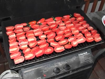Tomatoes on the barbeque - Fold3.com