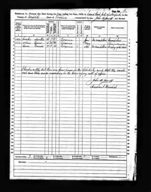 Frances-PULLEY-LEWIS-death-record-VA.jpg