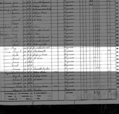 George Washington  LEWIS, 1870 fed census- VA-his mother is living with him