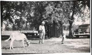 Tow-headed Bobby (we were both blonde until age 6) determined to lead a calf.  Grandfather Harry giving advice..JPG