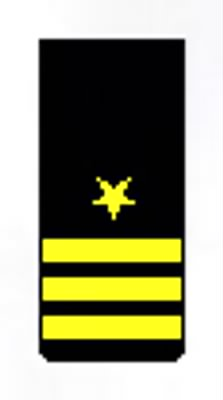 Commander Insignia_Sleeve