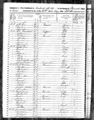 1850 Federal Census S A Wilcox