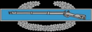 234px-Combat_Infantry_Badge.jpg