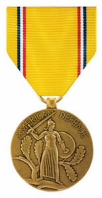 AM Defense Service Medal.jpg