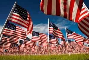 american-flags-in-a-field.jpg