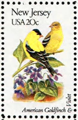 New Jersey Goldfinch.gif